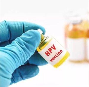 hpv vírus elemzés