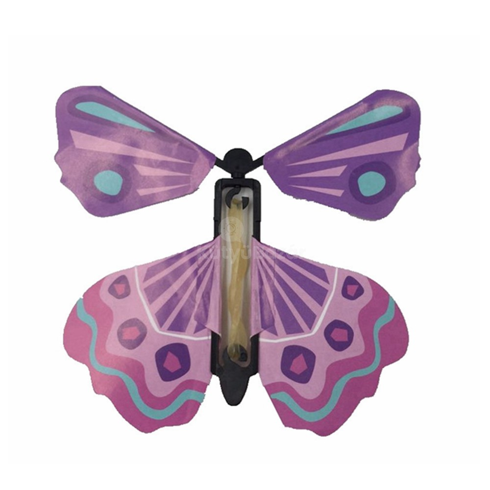 pillangó zeugma hivatalos oldal)