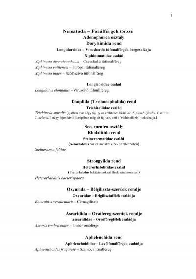 Aschelminthes nematoda
