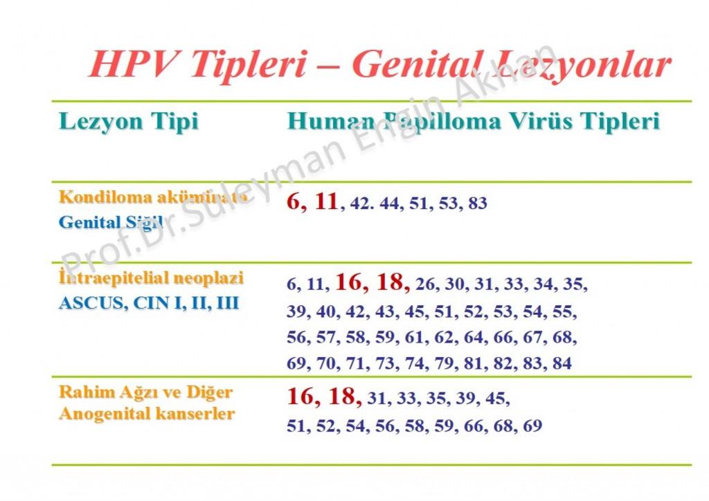 papillomavírus tünetei 16