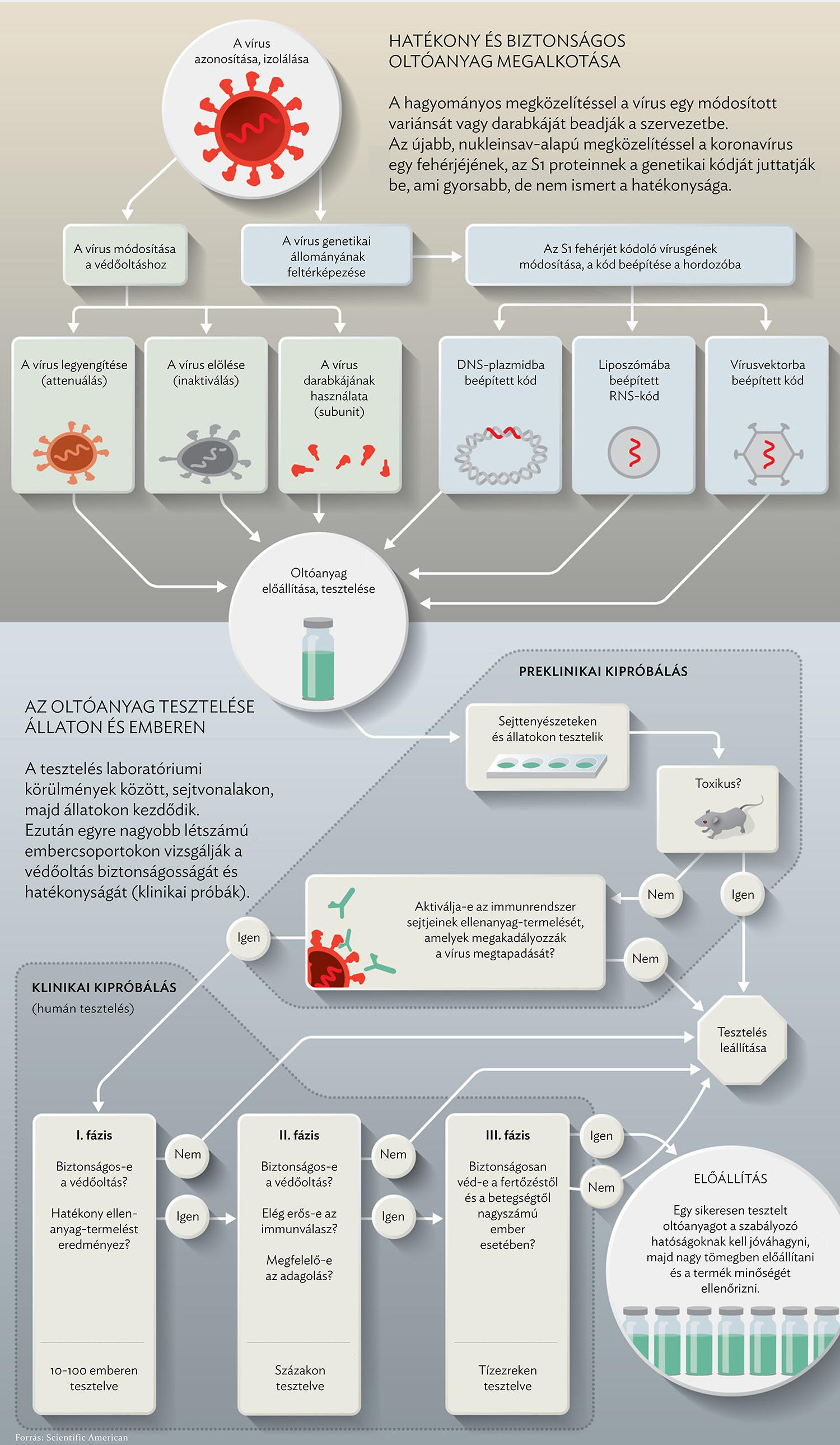 férgek és keresztférgek elleni gyógyszerek