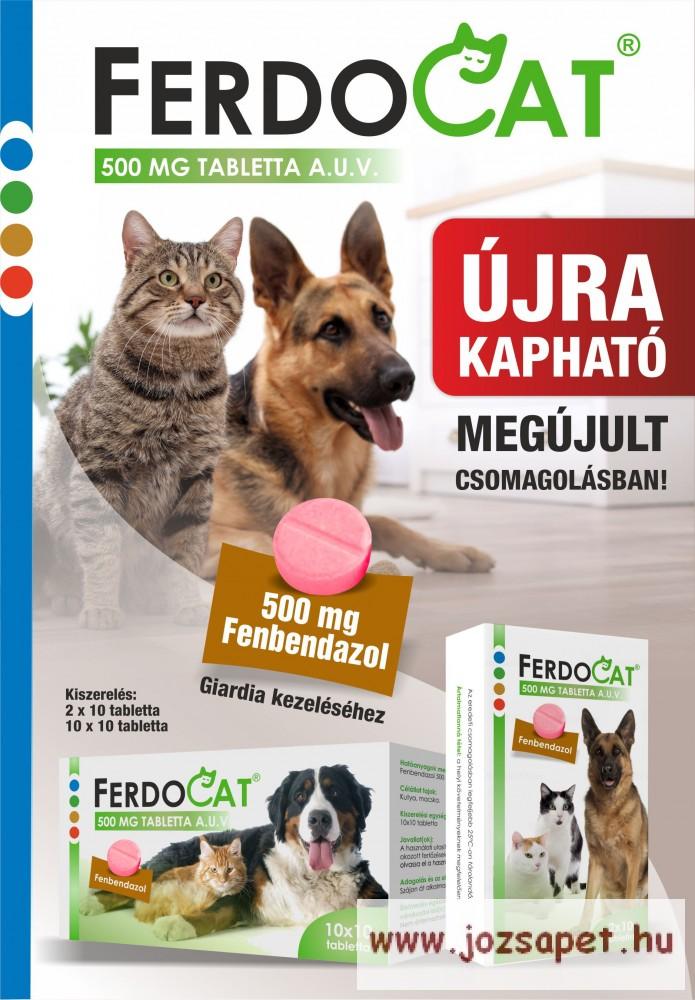 Milyen sűrűn kell féregteleníteni a kutyát és a macskát?