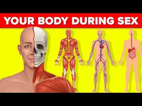 milyen gyógyszerek távolítják el az emberi test parazitáit)