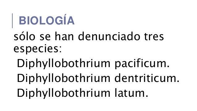 a diphildobothriasis fejlődési ciklusa