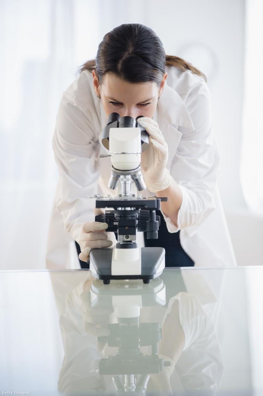 Megnyitja kapuit hazánk első HPV-centruma   reproartinfo.hu