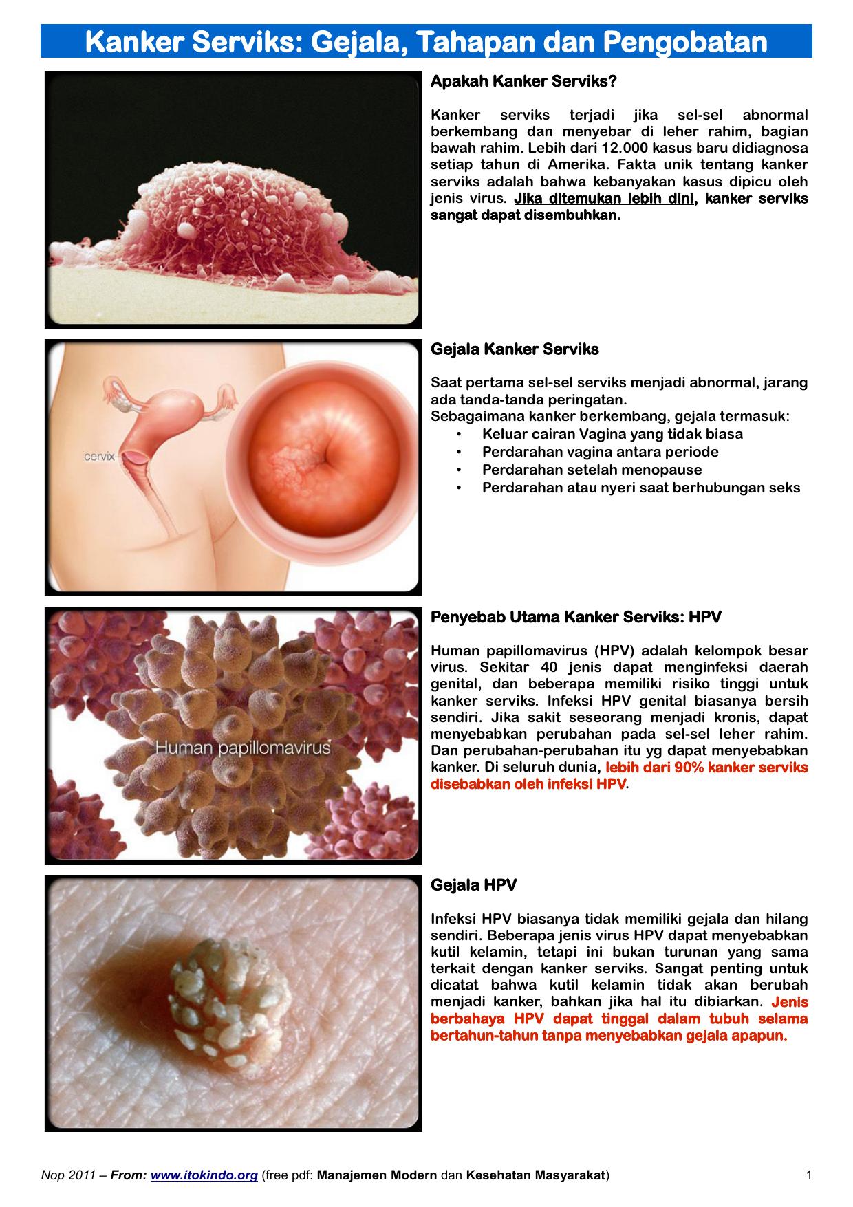 pote pret papilomas vírus