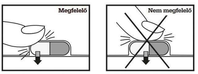 paraziták ammónia ornitinnel)