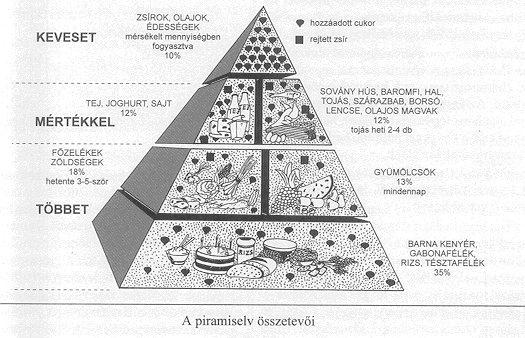 kibővített máj diéta receptek)