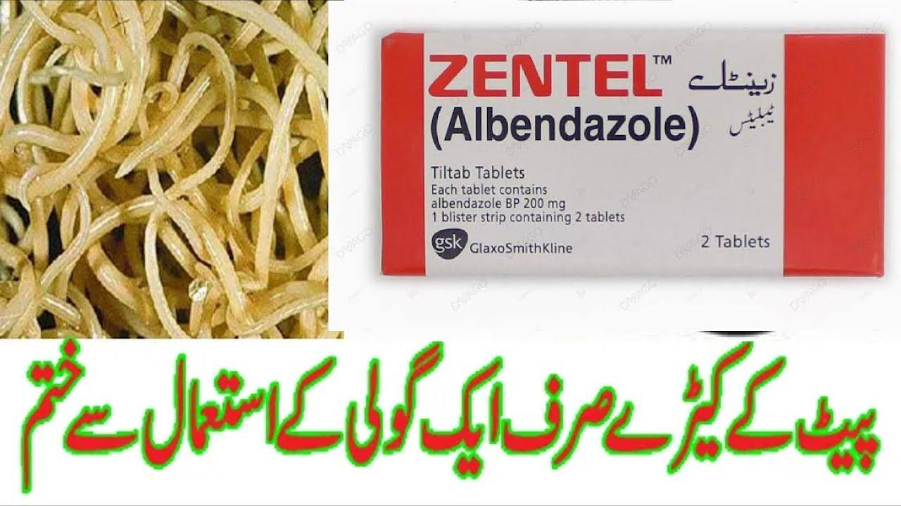 A zentel tabletta urdu nyelven használható)