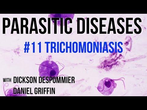 paraziták trichomonas az om