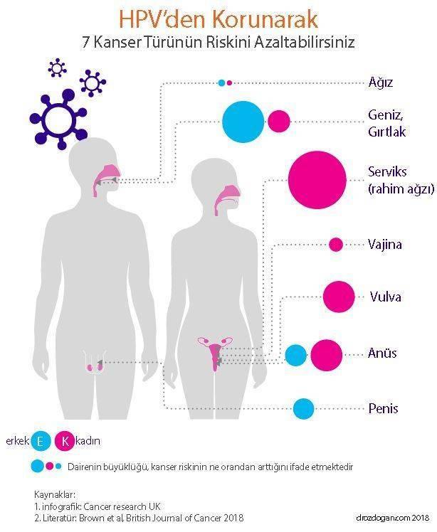 faktor m papilloma vírus)