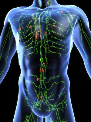 emberi papillomavírus és tüdőrák)