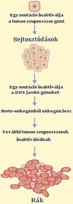 rektális rák 30 év alatt)