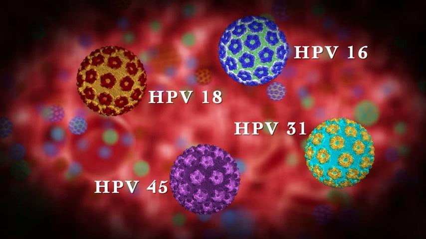 hpv vírus 16 és 18 típus)