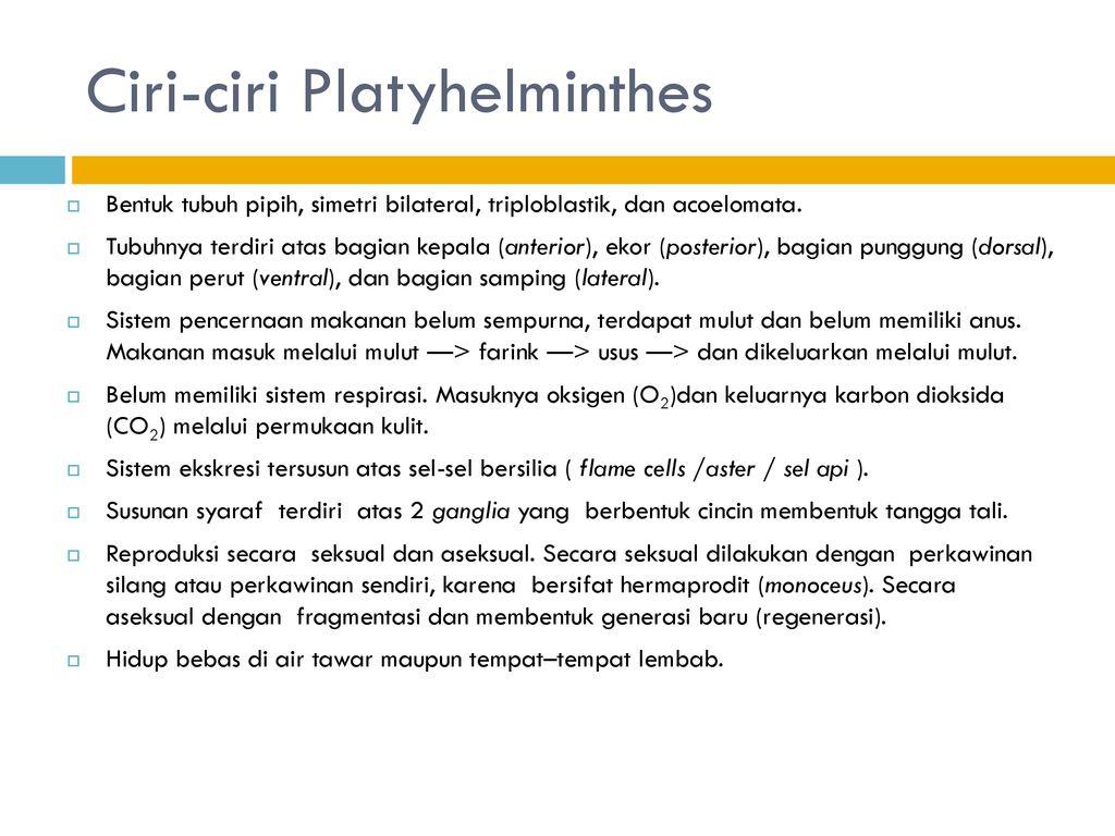 garnéla platyhelminthes és nemathelminthes