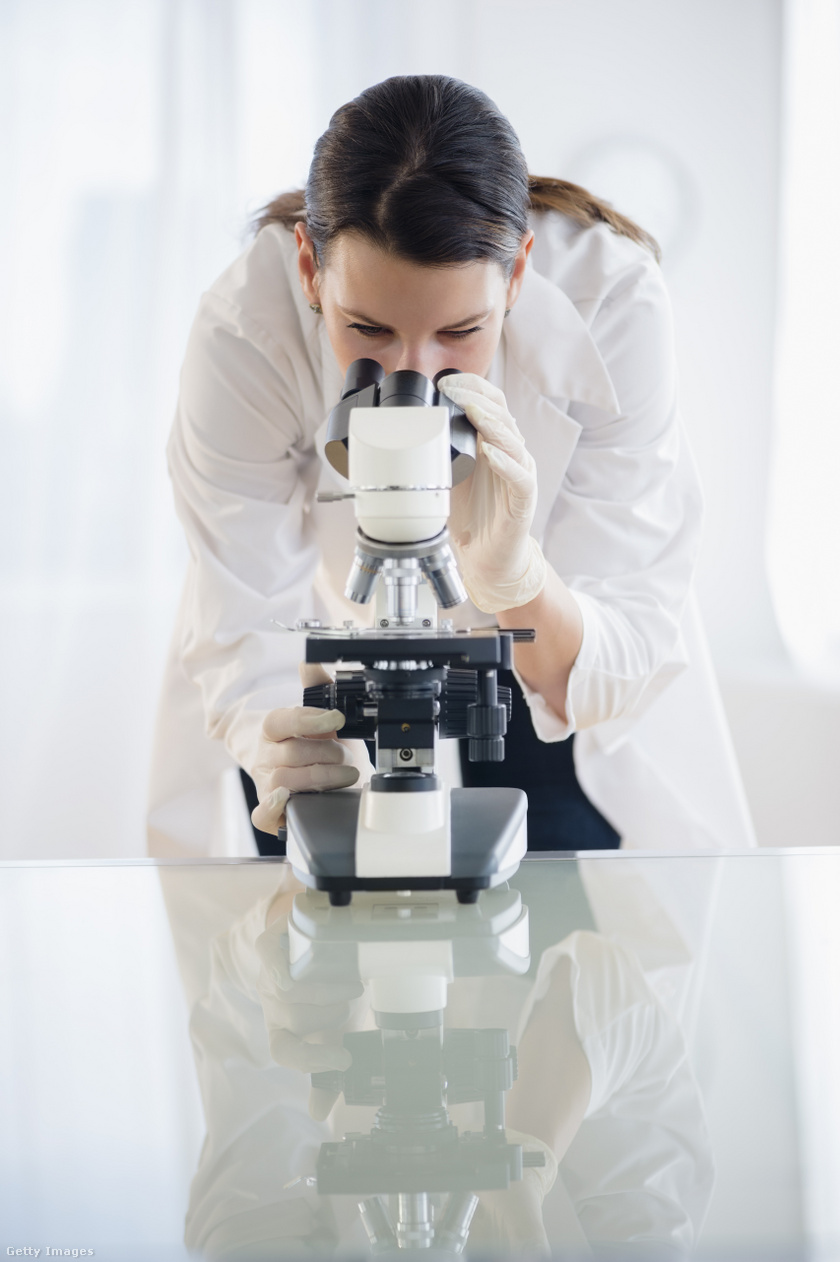 kutatási papilloma vírus ember)