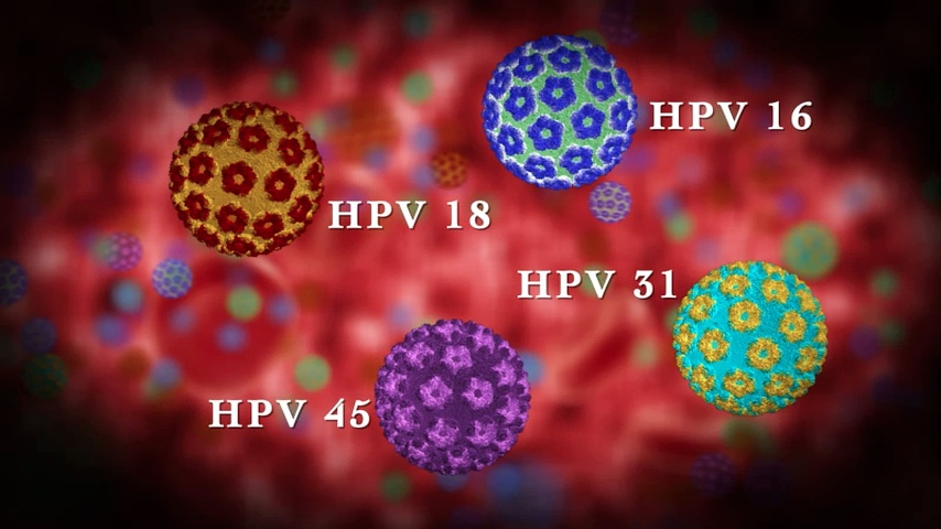 humán 45. típusú papillomavírus)
