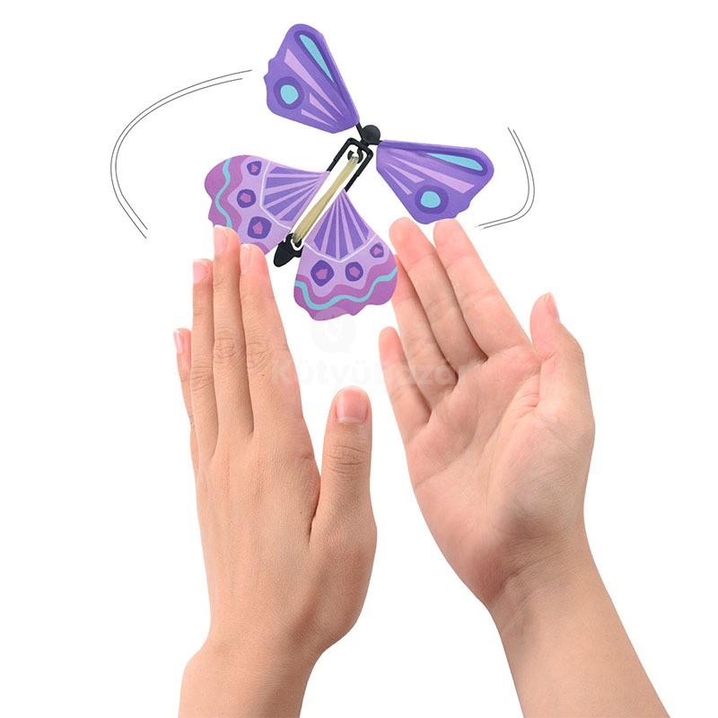pillangó zeugma hivatalos oldal