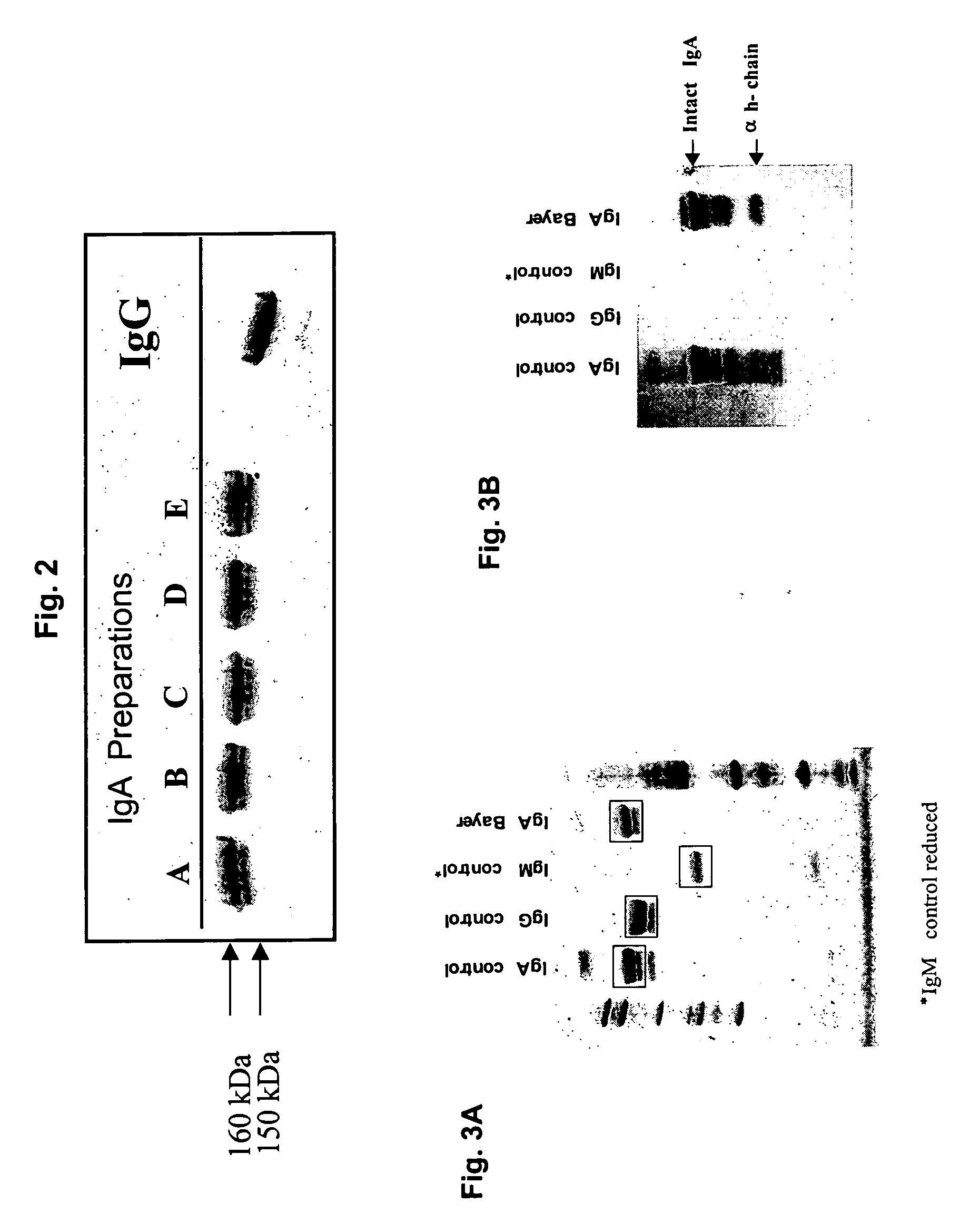 Helmint glükóz, Acularis condyloma