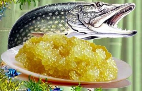 Lehetőség van a sózott csuka kaviár megfagyasztására
