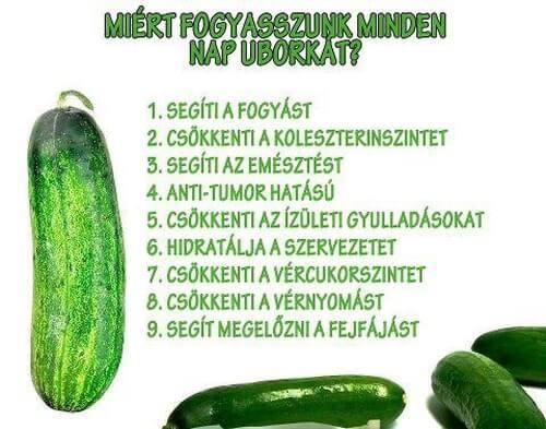 petefészekrák diéta)