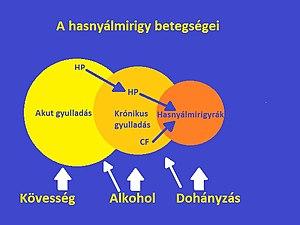 három helmintus életmódja