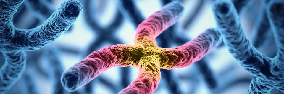 rák genetikai megváltozása
