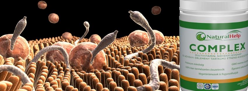 Parazitákkal a gyomor fájhat, A paraziták fajsúlya. Paraziták a testkezelésben