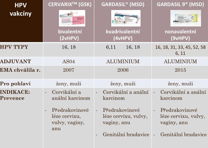 hpv infekce ockovani)