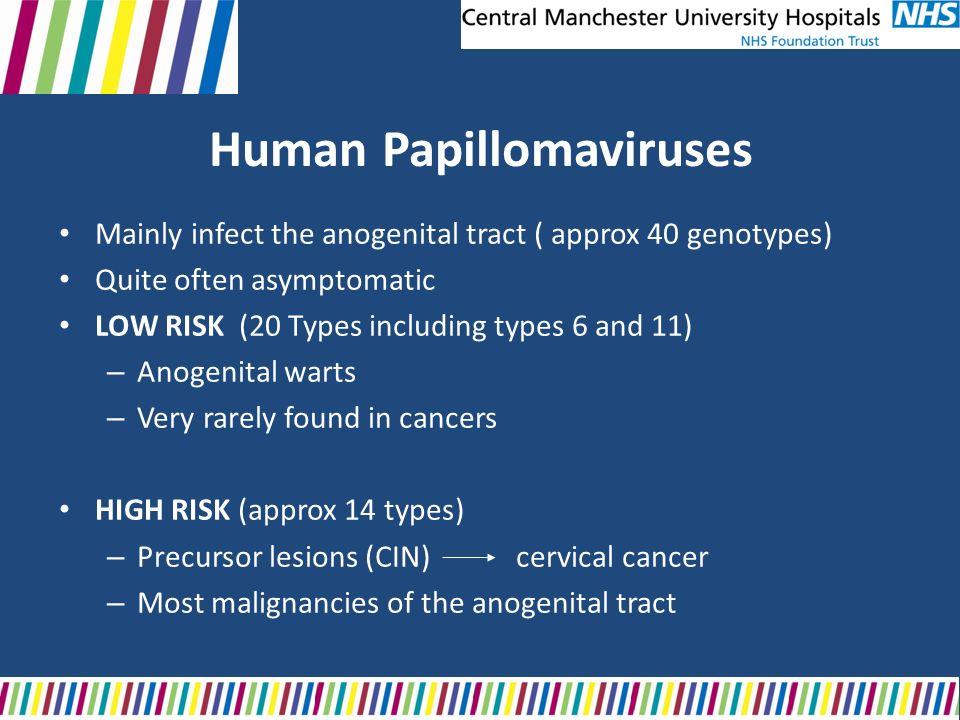 humán papillomavírus nhs
