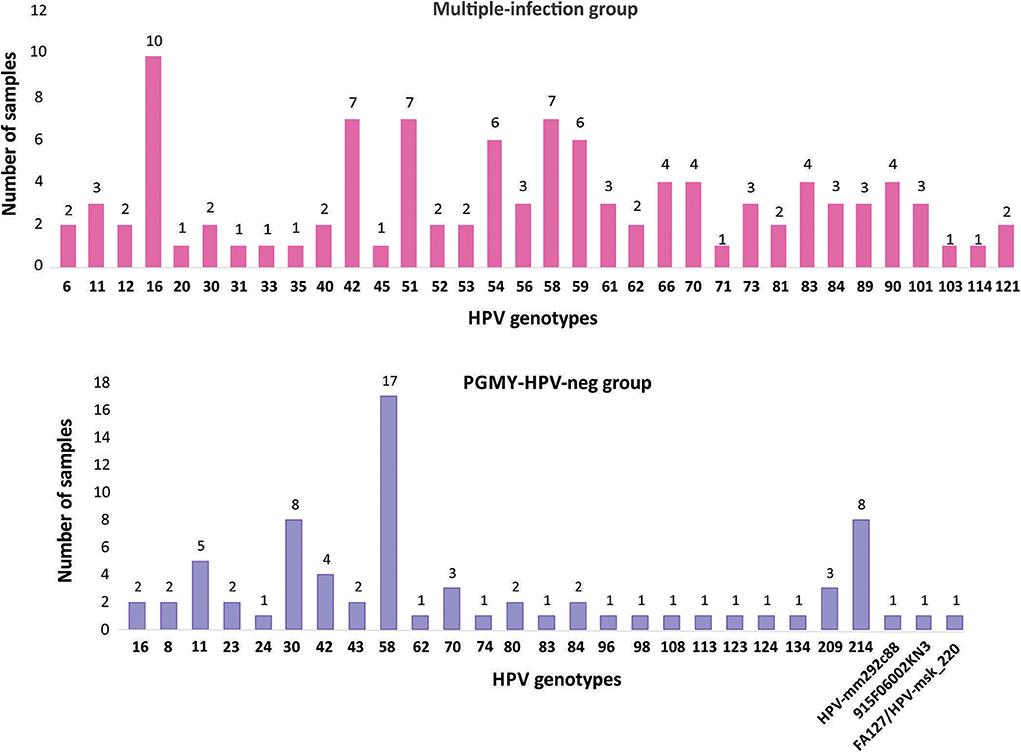 HPV vírus, HPV terjedése