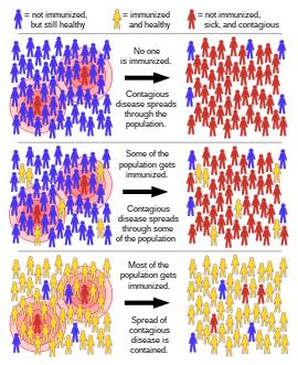 papillomavírus elleni vakcina és verneu betegség