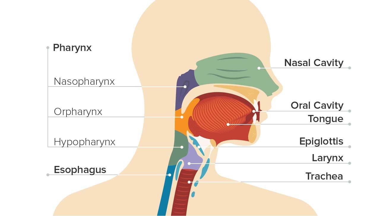 Gégerák: ezek a tünetei - EgészségKalauz