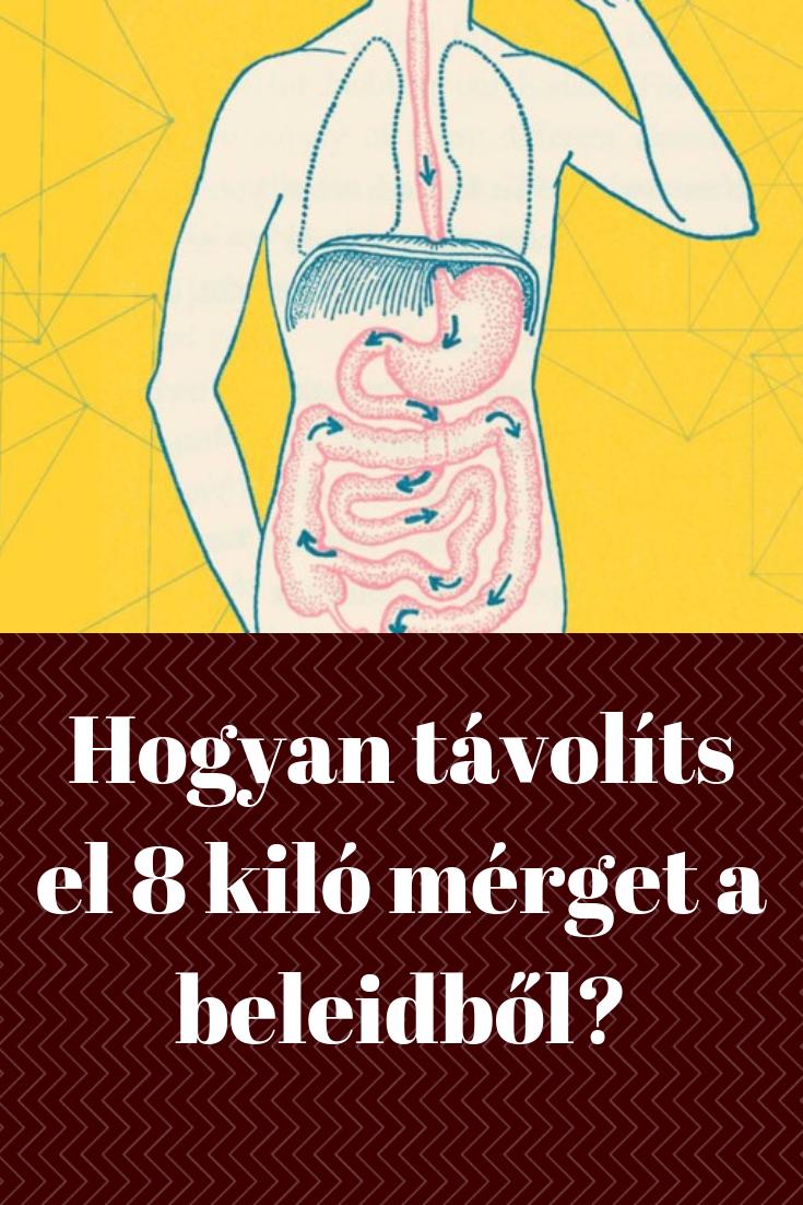 So Easy - megtisztulás három nap alatt   TermészetGyógyász Magazin