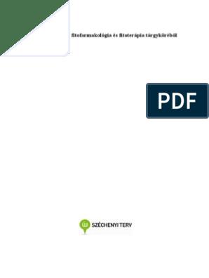 fordított papilloma hólyag patológia körvonalai