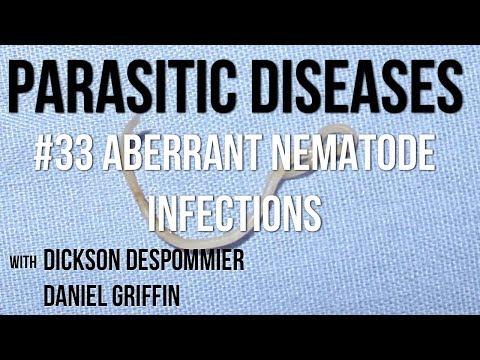 Típusú paraziták az emberekben, Különféle típusú paraziták az emberekben. Enterobiasis