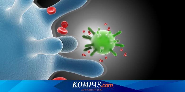 vizsgálat x papilloma vírus