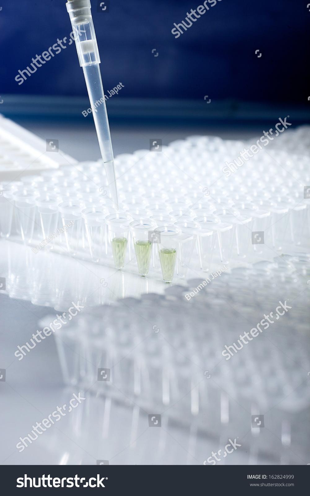 condylomatosis condyloma in féreghajtó szerek áttekintése